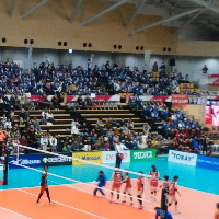 River Sakura Arena